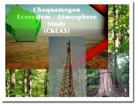 ChEAS Logo