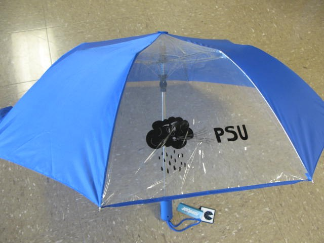 Storm Chase Umbrella